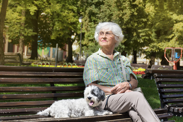 elderly woman sitting on a park bench with a dog