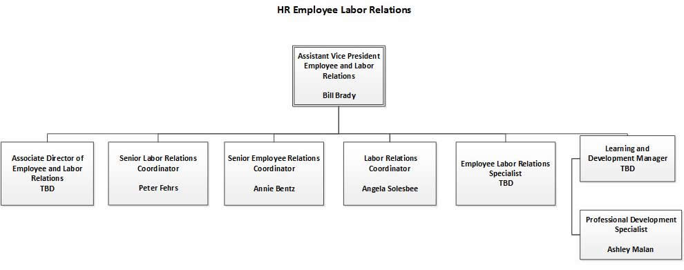 employee and labor relations org chart