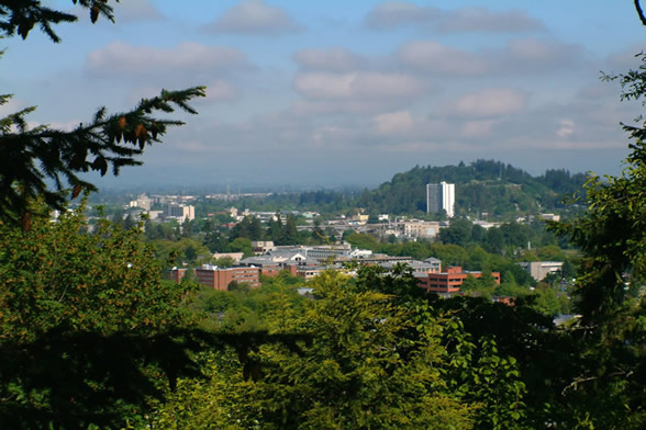 picture of eugene skyline