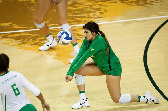 picture of a volleyball player